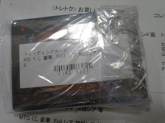 WS016066