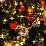 数量限定クリスマス福袋を発見!MTGは1万枚セット!?