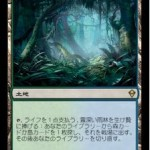 霧深い雨林(ゼンディカー)
