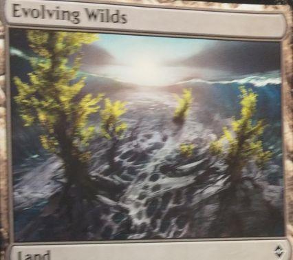 戦乱のゼンディカーのシンボル入り「進化する未開地」