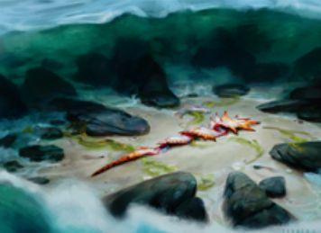 青アンコのソーサリー・ドロー「沿岸の発見」