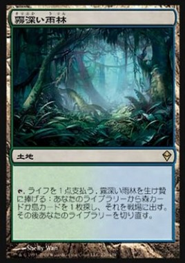 霧深い雨林(Misty Rainforest)