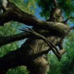 統率者2015に収録のツリーフォーク「Great Oak Guardian」が公開!瞬速&到達&CIPでクリーチャーを全体強化しつつアンタップ!※日本語版カード「大樫の守護者」が公開!
