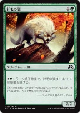 針毛の狼(イニストラードを覆う影)
