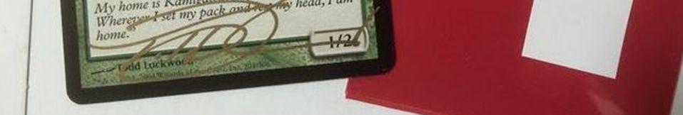 WS125034
