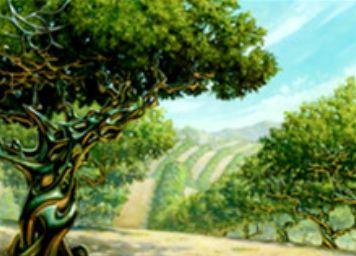 コンフラックス収録のレア土地「風変わりな果樹園」がMTG「王位争奪」で再録!相手の土地が生める色マナを生産可能なランド!