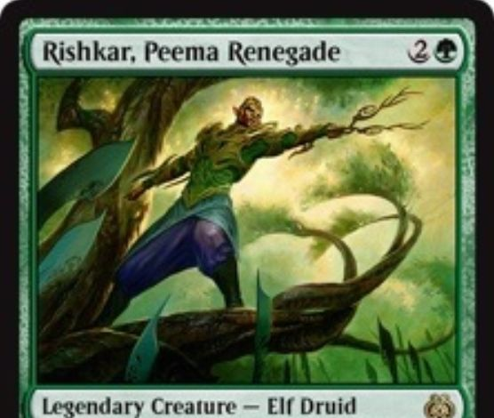 伝説のエルフドルイド「Rishkar, Peema Renegade」が霊気紛争に収録!CIPでクリーチャー2体までを対象に+1/+1カウンターを付与!さらに、カウンター持ちのクリーチャーに緑マナ生産能力を付与!