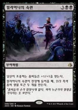 Liliana's Expertise(アモンケット)韓国語版