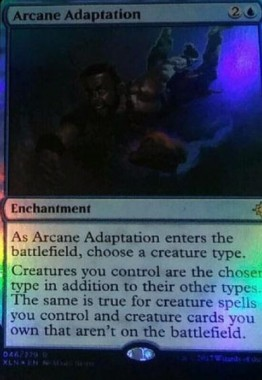 Arcane Adaptation(イクサラン)