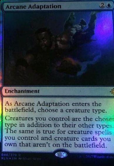 Arcane Adaptation(イクサラン)