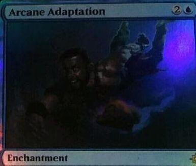青レアのエンチャント「Arcane Adaptation(イクサラン)」が非公式スポイラーに掲載!CIPでクリーチャー・タイプを選び、戦場や手札、墓地やライブラリーのクリーチャーに選んだタイプを追加する!