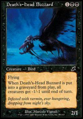 死神頭のノスリ(Death's-Head Buzzard)スカージ