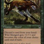 野生の雑種犬(MTG オデッセイ 思い出のカード)