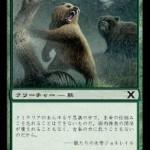 灰色熊 MTG