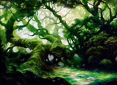 戦乱のゼンディカーのコモン緑土地「Fertile Thicket」