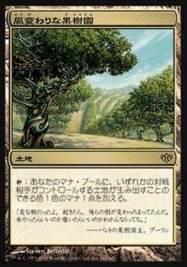 風変わりな果樹園(コンフラックス)