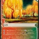 燃え柳の木立ち(マジックザギャザリング)