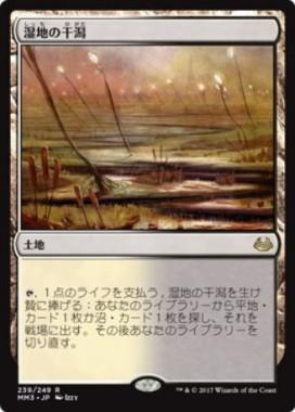 湿地の干潟(モダンマスターズ2017)