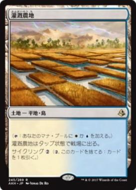 灌漑農地(MTG「アモンケット」収録レア)