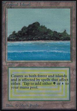 アルファ「Tropical Island」が駿河屋で買取受付中!Alpha版「トロピー」の買取価格は驚異の17万円!