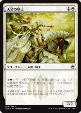 天望の騎士(Knight of the Skyward Eye)マスターズ25
