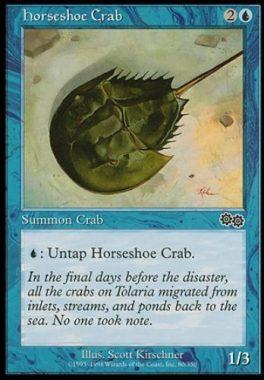 カブトガニ(Horseshoe Crab)ウルザズ・サーガ