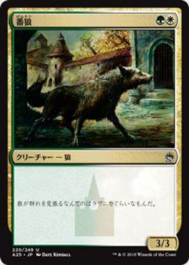 番狼(Watchwolf)マスターズ25