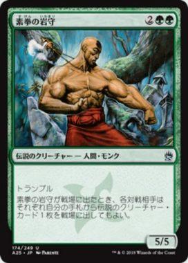 素拳の岩守(Iwamori of the Open Fist)マスターズ25