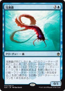浅瀬蟲(Reef Worm)マスターズ25