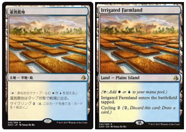 【採用デッキ】灌漑農地(アモンケット)の採用デッキレシピ情報まとめ