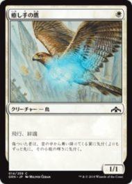 癒し手の鷹(ラヴニカのギルド)日本語版