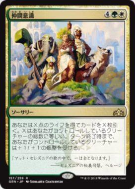 仲間意識(ラヴニカのギルド)日本語版