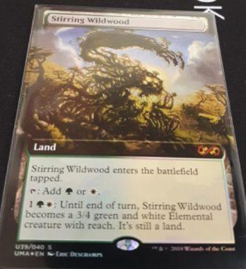 発な野生林(Stirring Wildwood)(No.39/40)