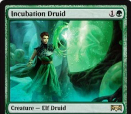 【ラヴニカの献身】緑レア生物「Incubation Druid」が公開!2マナ0/2&緑緑3で順応3&タップであなたの土地が出せる色のマナを1点生産!+1/+1カウンターが乗っているならタップで出るマナは3マナに!
