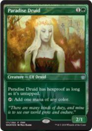 Paradise Druid(灯争大戦)