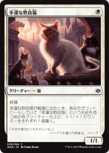幸運な野良猫(灯争大戦)