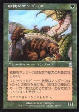 敏捷なマングース(Nimble Mongoose)オデッセイ