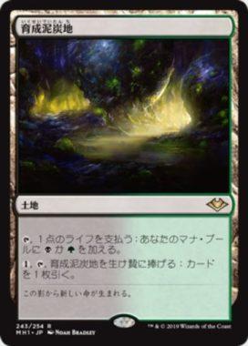 育成泥炭地(Nurturing Peatland)モダンホライゾン・日本語版