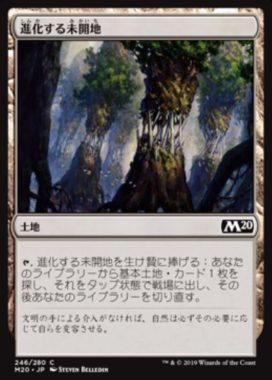 進化する未開地(Evolving Wilds)基本セット2020