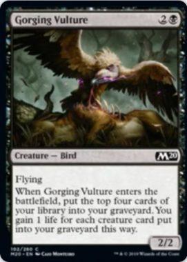 Gorging Vulture(基本セット2020)