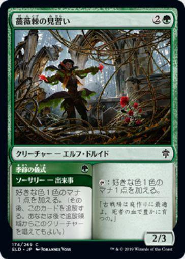 薔薇棘の見習い(Rosethorn Acolyte)エルドレインの王権