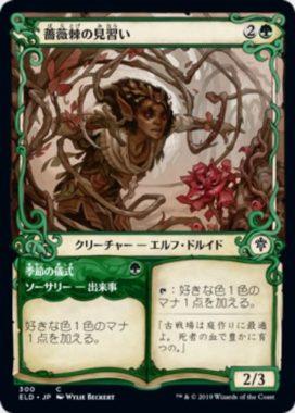 薔薇棘の見習い(Rosethorn Acolyte):ショーケース版/通常版