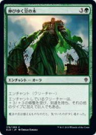 伸びゆく豆の木(Tall as a Beanstalk)エルドレインの王権