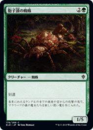胞子頭の蜘蛛(Sporecap Spider)エルドレインの王権