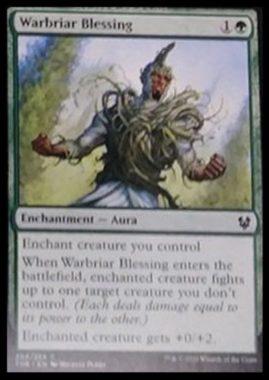 (Warbriar Blessing):MTG「テーロス還魂記」非公式スポイラーより