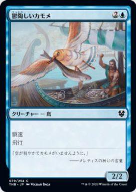 鬱陶しいカモメ(Vexing Gull)テーロス還魂記