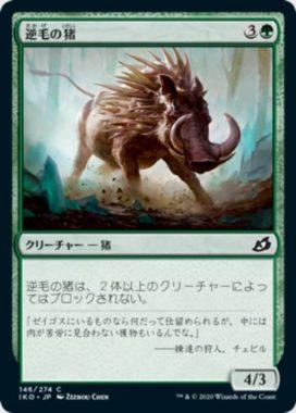 逆毛の猪(Bristling Boar)イコリア:巨獣の棲処