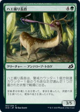 ハエ捕り長首(Flycatcher Giraffid)