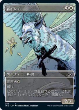 狐インコ(ショーケース版