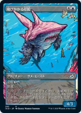 飛びかかる岸鮫(ショーケース版